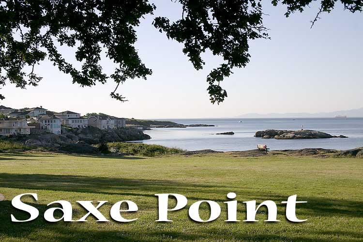Saxe point park wedding